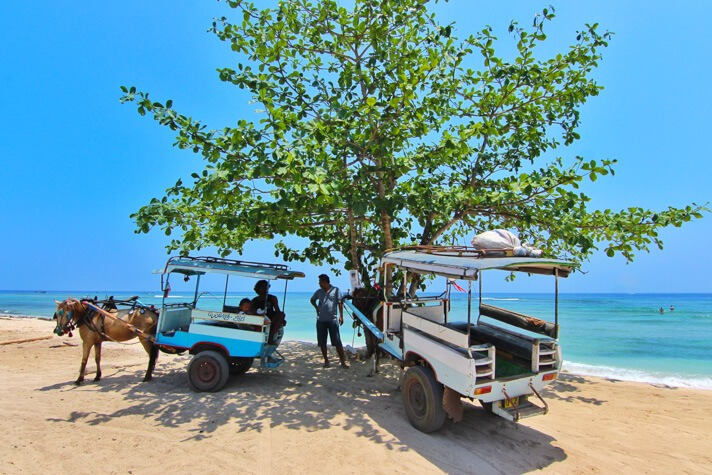 couples coordinates gili islands travel guide donkey carriages