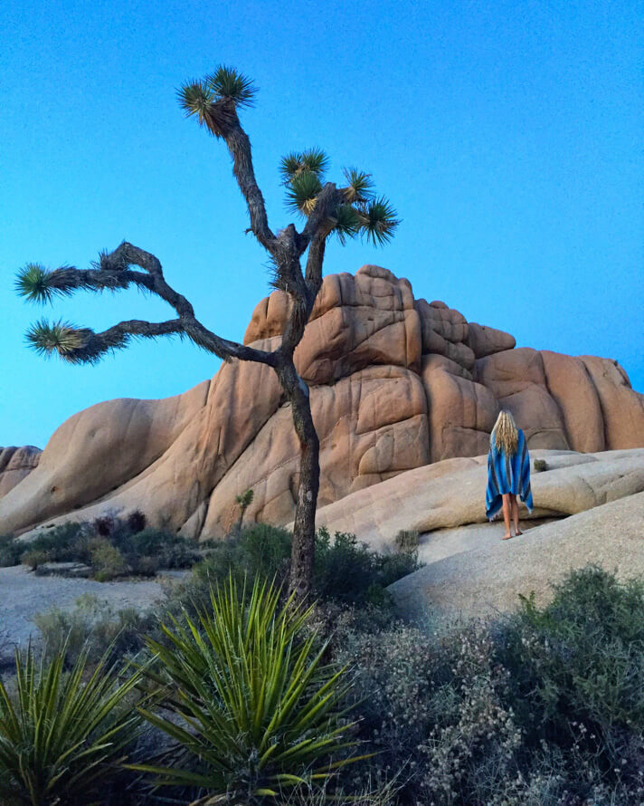 couples_coordinates_joshua_tree5