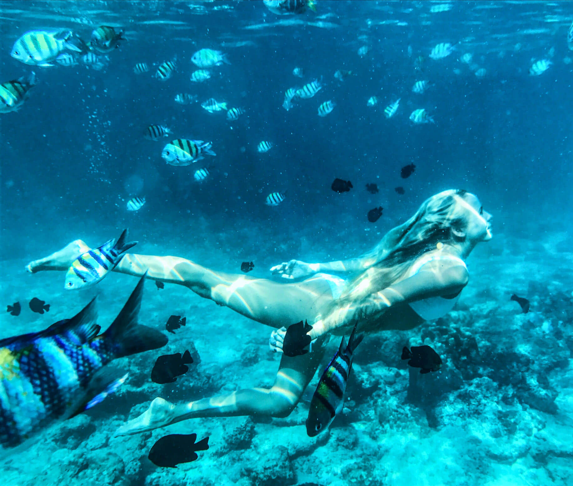 alex couples coordinates swimming underwater with fish koh phi phi thailand