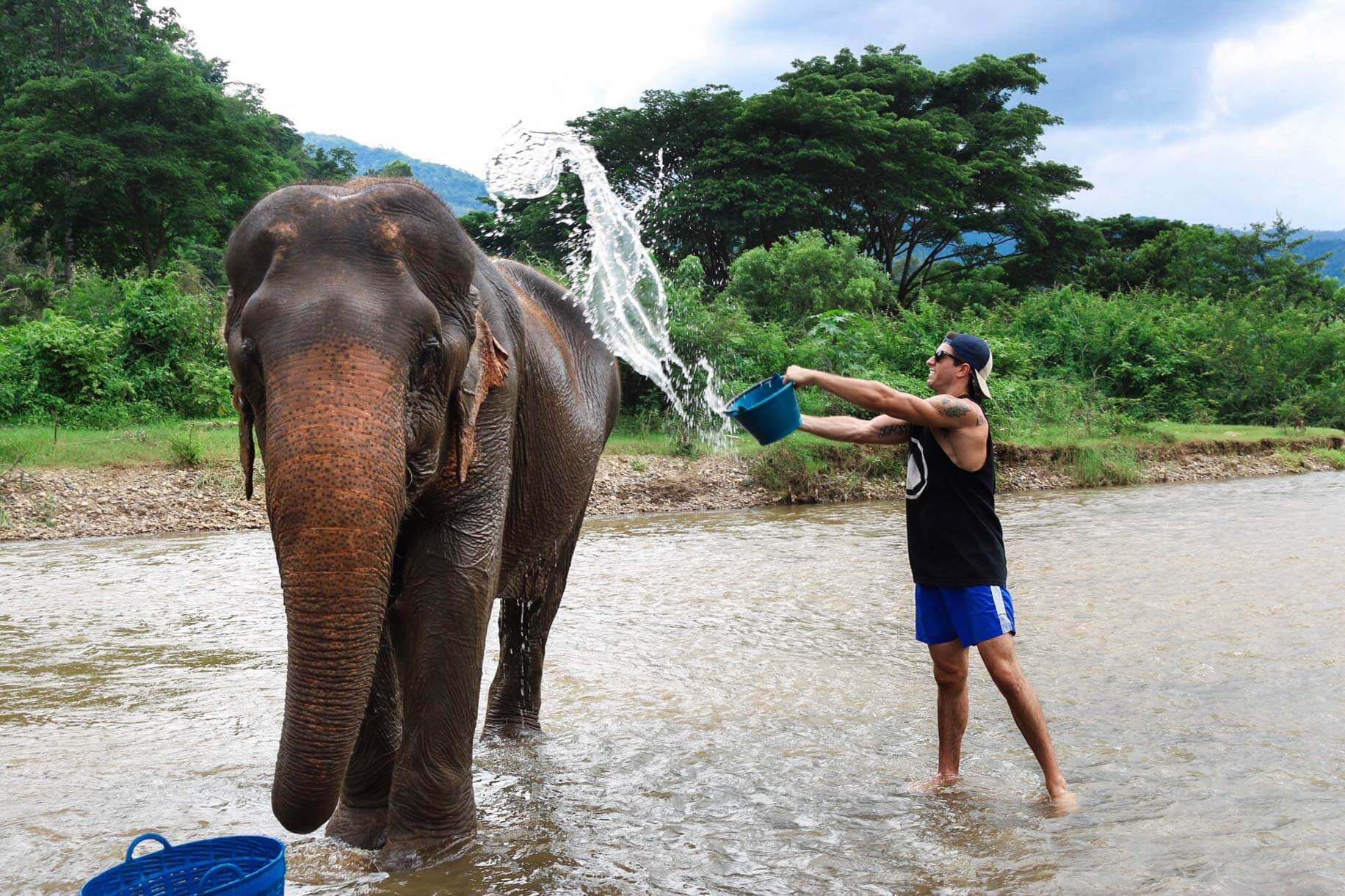michael bathing an elephant at elephant nature reserve chiang mai thailand