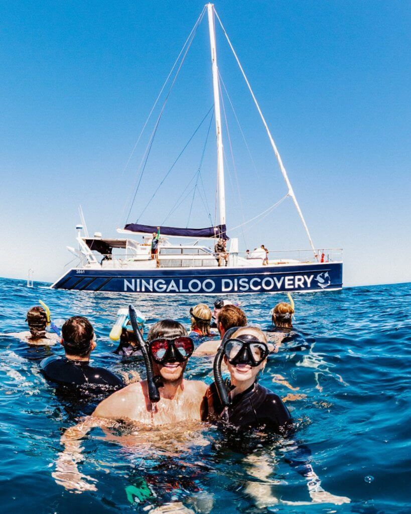 michael and alex snorkeling with ningaloo discovery whale shark tour exmouth australia